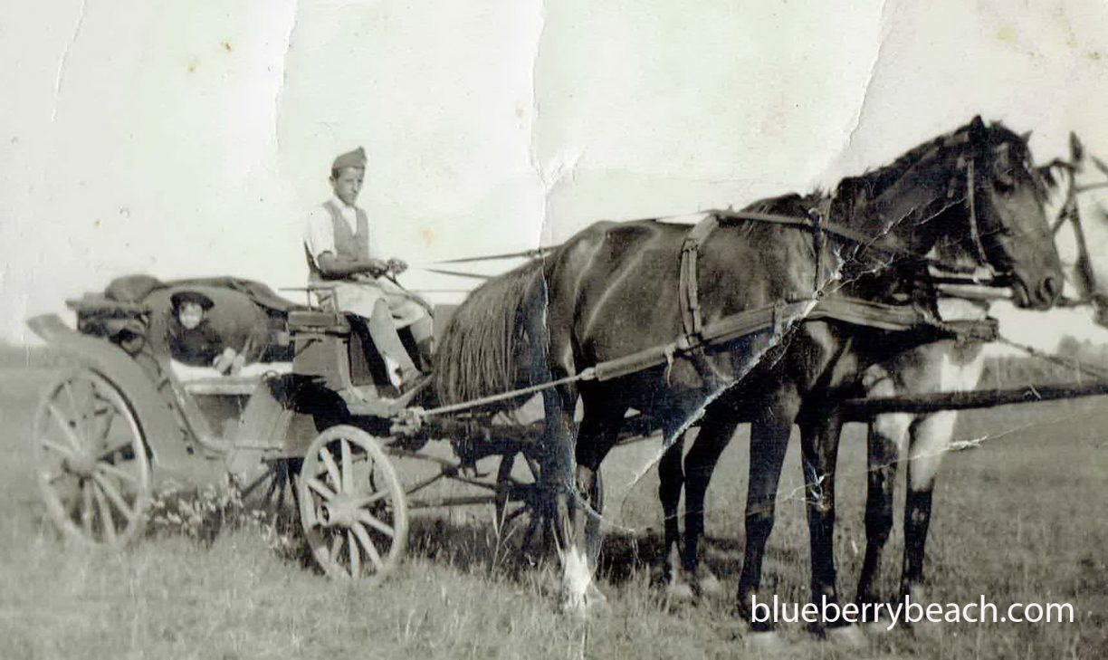 horsewagon